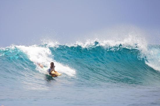 Monkey Surfing Lembongan - Alt image