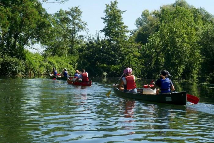 Ill Sélestat Bas Rhin canoe kayak trip
