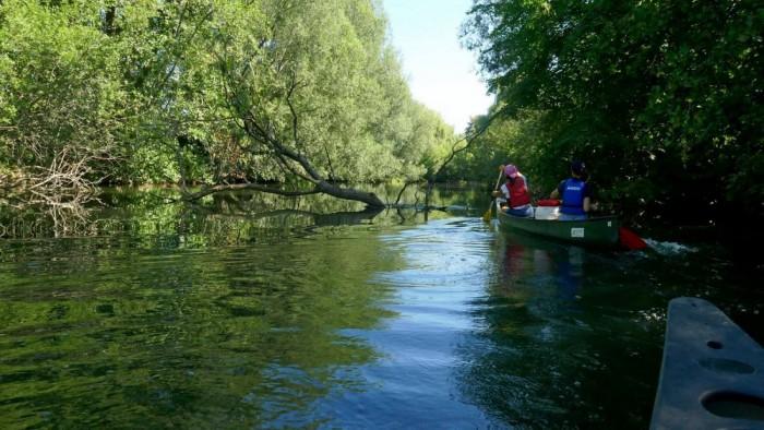 Canoë Kayak Club de l'Ill Sélestat Bas Rhin