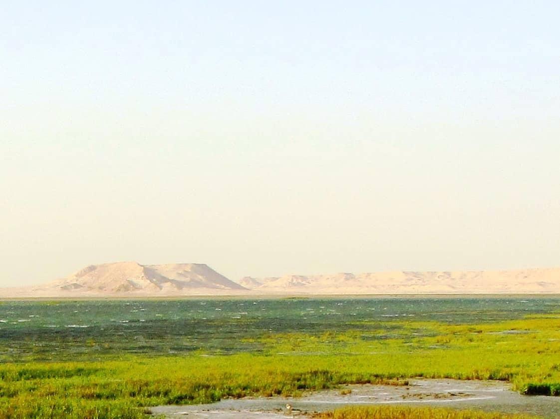 Dakhla Kite Planet - Alt image