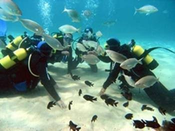 Blue Explorers Dive Center - alt_image_gallery