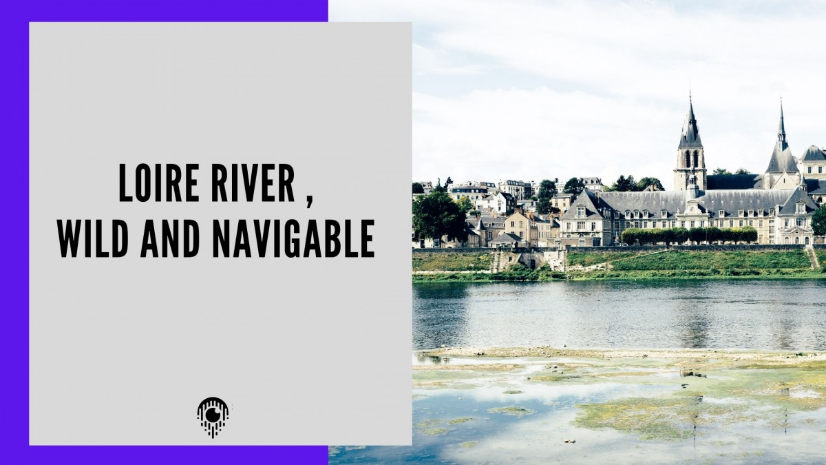 Loire river , wild and navigable