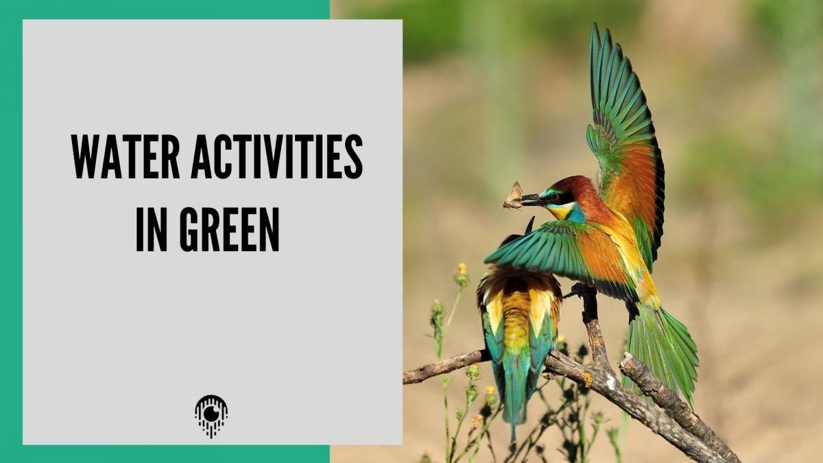 Water activities in Green